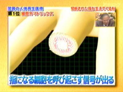 テレビ資料 (20)