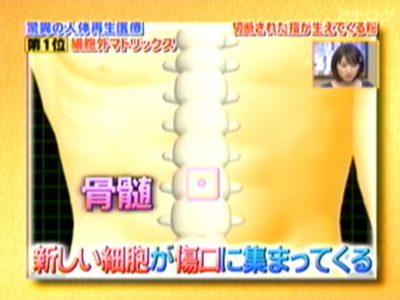 テレビ資料 (21)